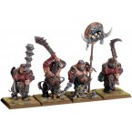 Ogre Kingdoms Ironguts