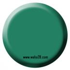 Foul Green 72025